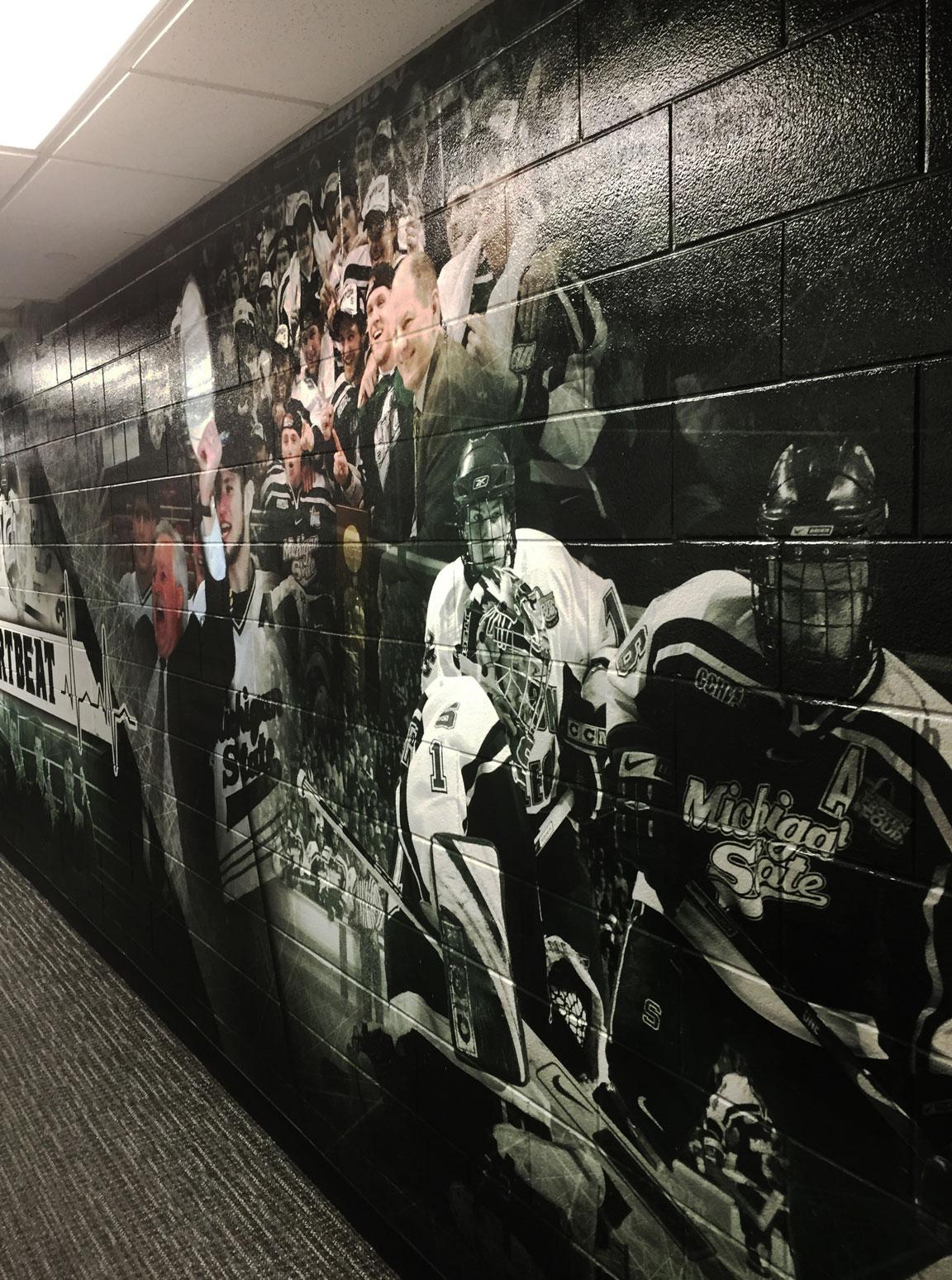 MSU Hockey Wallpaper 06